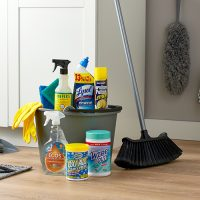 /category/cleaning