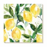 Lemon Absorbent Stone Coaster