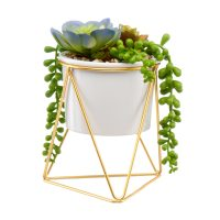 Faux Succulent with Gold Stand